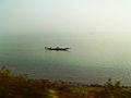 Chilika Khoradha Odisha.jpg
