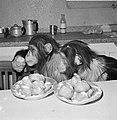 Chimpansees Tilly en Hilda uit Artis eten oliebollen, Bestanddeelnr 918-6183.jpg