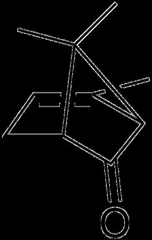 Chrysanthenone - Image: Chrysanthenone