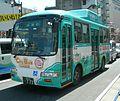 Chubus-335.jpg