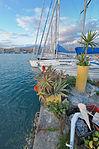 Circolo Nautico NIC Porto di Catania Sicilia Italy Italia - Creative Commons by gnuckx (5386230631).jpg