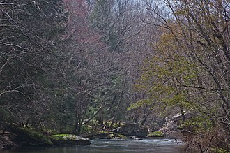 Clear Fork (Big South Fork Cumberland River tributary) - Early spring view near Peter's Bridge.