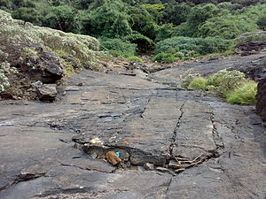 Pushpagiri (mountain) - Trekking Cliff2