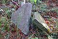 Cmentarz żydowski w Dobrodzieniu40.JPG