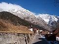 Collina ed il Coglians - panoramio.jpg