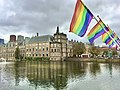 Coming-Out Day 2020 in The Hague - Rainbow flags at Hofvijver next to the national parlement of the Netherlands - img 02.jpg