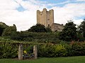 Conisbrough castle and stocks - geograph.org.uk - 523268.jpg