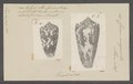 Conus magus - - Print - Iconographia Zoologica - Special Collections University of Amsterdam - UBAINV0274 087 02 0011.tif