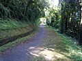 Coreglia Antelminelli, Province of Lucca, Italy - panoramio - jim walton (1).jpg