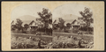 Cottage Homes, on the Hudson River, West Point, from Robert N. Dennis collection of stereoscopic views.png