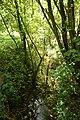 Cotthembos, Vallei van de Cotthembeek 24.jpg