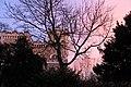 Coucher de soleil sur Cologny - panoramio (48).jpg