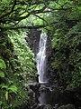 Cranny Falls - geograph.org.uk - 1012819.jpg
