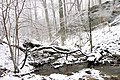 Creek near Hemlock Falls - panoramio.jpg