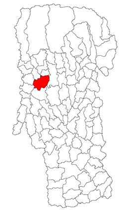 Vị trí của Curtea de Argeş