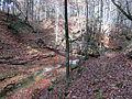 D-BY - Rohrbachtobel im Wirlinger Forst 1532.JPG