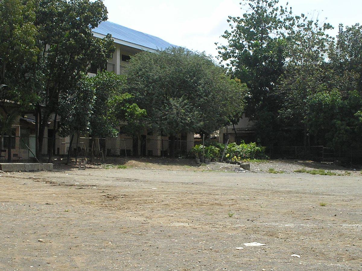 don vicente rama memorial national high school