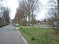 Delft - 2013 - panoramio (1153).jpg