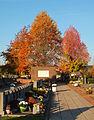Dendermonde St-Gillis kerkhof 07.JPG