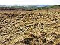 Dersalloch Moorland - geograph.org.uk - 351662.jpg