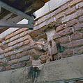 Detail balkkop - Heeswijk - 20334334 - RCE.jpg