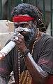 Didgeridoo (30883334061).jpg