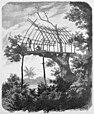 Die Gartenlaube (1887) b 289.jpg