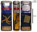 Diplasterias brandti (MNHN-IE-2014-224).jpg