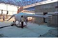 Diplodocus in Progress - Dinosaurs Alive Exhibition - Science City - Calcutta 1995-June 328.JPG