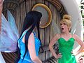 Disneyland Pixie Hollow funny stories.jpg