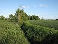 Ditch between fields - geograph.org.uk - 1309952.jpg