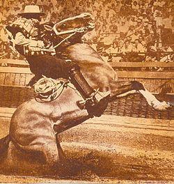 33c9132a8e95a Santiago Urrutia y Cachupín realizando una «entrada de patas» en el  Campeonato Nacional de Rodeo de 1973. Juntos fueron campeones de Chile  durante cuatro ...