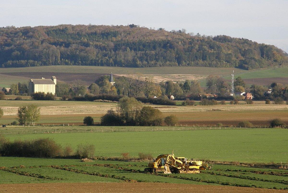 Campagna wikipedia for Una storia piani di casa di campagna francese