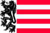 Flag of Sas van Gent