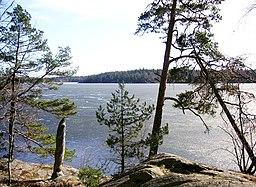 Drevviken med mars-is i året 2007