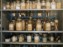 Dried Cereal grains and other similar products in Glass jars in the Herbarium collection at Leiden.jpg