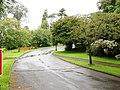 Driveway to Servite Priory, Benburb. - geograph.org.uk - 528959.jpg
