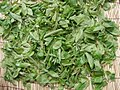 Drying persimmon leaves.jpg