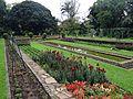Durban Botanic Gardens-1b.JPG