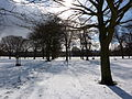 Edinburgh's March Snow (8568960058).jpg