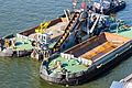 Eimerkettenbagger Aalscholver mit Schlepper Rupertus vor Deutzer Werft-4070.jpg