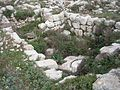El-Khirbe-synagogue-52.jpg
