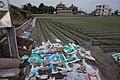 Empty fertilizer bags Huwei.jpg