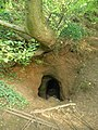 Entrance to the Caynton Hall cave - grotto - geograph.org.uk - 1391862.jpg