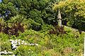 Escadários, Bom Jesus do Monte (15772993241).jpg