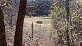 Esglèsia de Santa Margarida - panoramio.jpg
