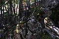 Esterno grotta apparizione.jpg