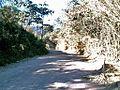 Estrada para Pedro Leopoldo - panoramio.jpg