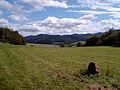 Evielibuck in Wittnau mit Gedenkstein.jpg