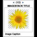 Exp Imagestack.png
